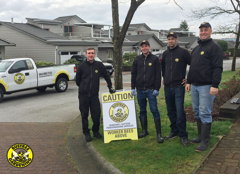 Busybee Gardening Window & Power Washing Team