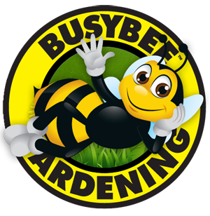 Busybee_Logo_right_2