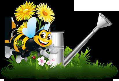 bee_watering