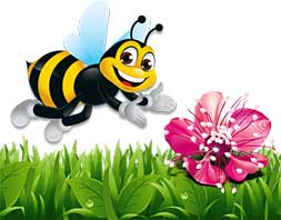 flower_bee
